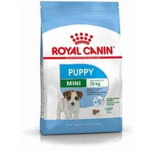 Royal Canin Mini Junior Dog Food - 2kg