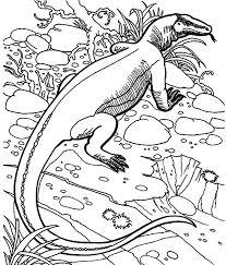 Komodo Dragon Hiding Behind Grass Coloring Pages