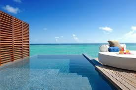 100 W Retreat Maldives Indulge In Your Own Private Infinity Pool At Spa