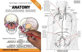 Free Horse Unit Study Resources Anatomy