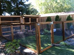 Can Guinea Pigs Eat Salted Pumpkin Seeds by Outdoor Guinea Pig Pen I Want To Do Something Like This For My
