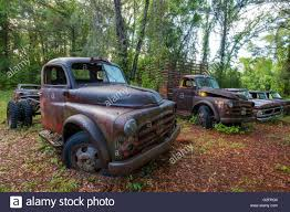 Old Rusted Abandoned Cars And Trucks In Crawfordville Florida Stock ... Old Classic Cars And Trucks In Dickerson Texas Stock Photo Image And Junkyard Youtube Kalispell August 2 The Junk Yards Georgia Picture Royalty Free Rusted Abandoned Cars Trucks In Crawfordville Florida Rusted Chevrolet By Francescolt Source Tumblrcom A Stack Of Old Junk An Stone Quarry East Craigslist Washington Dc 2019 20 Top Upcoming 18 Awesome Purple That Will Blow You Away Photos 1950 Plymouth Tweetybird Vintage Car Truck Etsy