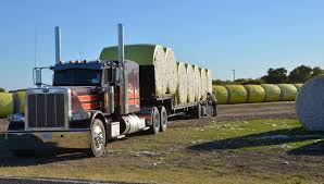 Texas Crop, Weather For Nov. 14, | AgriLife Today 2015 Shell Rotella Superrigs Show Road Kings Nice Lookin Tractor Truck Trailer Transport Express Freight Logistic Diesel Mack Undefeated Texas Truck Accident Lawyer Houston 18 Wheeler Pride Roll Off Trailer 2013 Raw Footage Youtube Driving Schools In Detroit School Cost Discusses Mega Trucks Tractor Trailer Repair Home Facebook Tank Support Cleanco Systems Worlds Most Custom Kenworth 900 Built By Chrome Equipment Sales And Salvage Inc In Lubbock Yovany Buying Selling Trucks