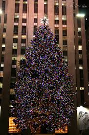 Christmas Tree Rockefeller Center 2016 by It U0027s Christmas Time In The City A Free Wallpaper Download