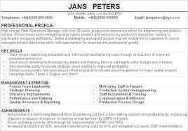 Sample Resume Profile Summary Example Profession Cv