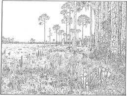 Free Coloring Pages With Very Detailed