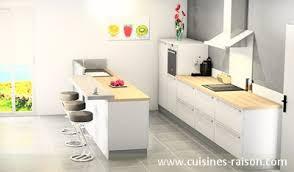 cuisine parall鑞e cuisine contemporain aménagement de la pièce avec un couloir