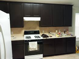 Endearing Staining Kitchen Cabinets Fancy Decoration For Interior Design Styles With