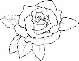Amazing Idea Coloring Pages Draw A Rose For Kids Resolution 400 X 407 58 KB Jpeg