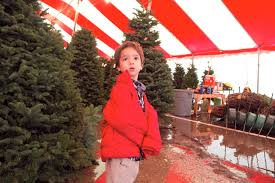 Nordmann Fir Christmas Tree Smell by Families Like Smell Of Christmas Victoria Advocate Victoria Tx