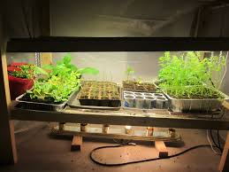 How to Make a Grow Light for your Garage – idaho gardening