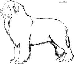 Boxer Dog Coloring Pictures Color Pages Printable For Size Click Here Sheets Colouring