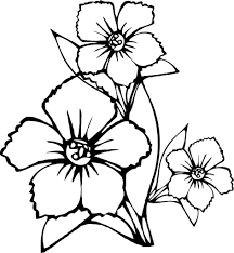 Pretty Flowers Coloring Page