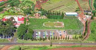 Dole Pineapple Plantation the World s st Maze Travel To
