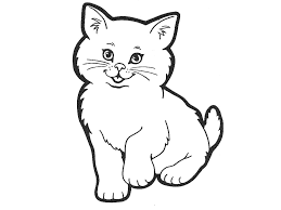 Coloring Book Cat 7236