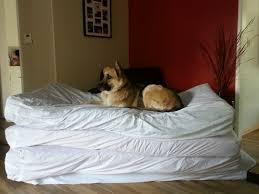 Kuranda Dog Beds by German Shepherd Rescue U2013 Burbank