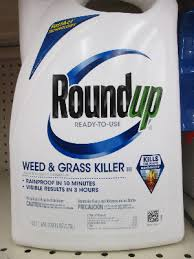 Traditional Roundup Weed And Grass Killer Shown Above Contains The Active Ingredient Glyphosate