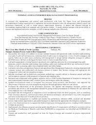 Operations Manager Resume Template Laboratory Risk Management Samples Diplomaticregatta It Examples Summary Large Size