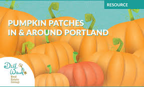Roloffs Pumpkin Patch In Hillsboro Or by Pumpkin Patches In U0026 Around Portland Dill Ward Real Estate Group