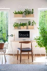 regale mit frischen pflanzen hängen über dem schreibtisch aus holz mit leeren bildschirm monitor in echtes foto weißen wohnzimmer interieur