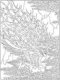 Awesome Images About Peacock Line Drawings Creative Haven Designs Coloring Book