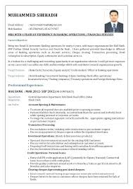 Resume Examples Banking Industry Feat Samples For Jobs Stylish Ideas Format Sector Free