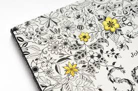 Secret Garden An Inky Treasure Hunt And Colouring Book Amazoncouk Johanna Basford 9781780671062 Books