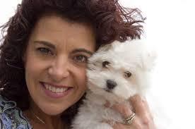 Do Jackie Bichon Shed by About Bichon Poodles Pets
