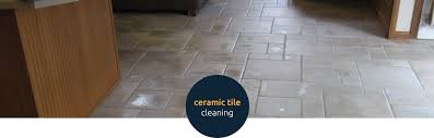 grout and tile cleaning carpet cleaning alexandria