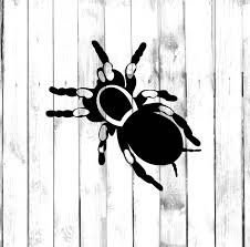 100 Tarantula Trucks Spider Sticker Dicut Decal Etsy