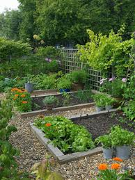 Potted Orange Flower With Vegetable Garden In Wood Bed Planters Also Gravel Path Trellis For Climbing Trees And Fence Rustic Ideas