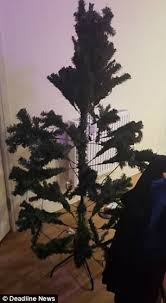 Which Christmas Tree Smells The Best Uk by Home Bargains U0027 24 99 Christmas Tree Could Be Uk U0027s Worst Daily