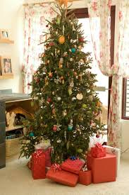 Sugar Or Aspirin For Christmas Tree by Caring For A Christmas Tree Thriftyfun