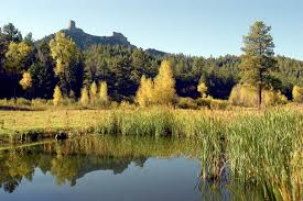 Studts Pumpkin Patch Grand Junction by Three Wonderful Ways To View Fabulous Fall Foliage In Pagosa