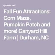 Pumpkin Patch Durham North Carolina by The Whimsical Playground In North Carolina That U0027s Straight Out Of