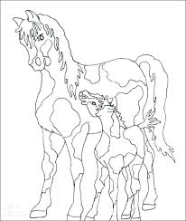 L3264 Realistic Coloring Fancy Paint Horse Pages Foal Images