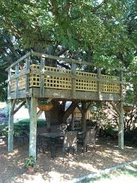 Articles With Backyard Treehouse Without Tree Tag: Backyard Tree ... 10 Fun Playgrounds And Treehouses For Your Backyard Munamommy Best 25 Treehouse Kids Ideas On Pinterest Plans Simple Tree House How To Build A Magician Builds Epic In Youtube Two Story Fort Stauffer Woodworking For Kids Ideas Tree House Diy With Zip Line Hammock Habitat Photo 9 Of In Surreal Houses That Will Make Lovely Design Awesome 3d Model Free Deluxe