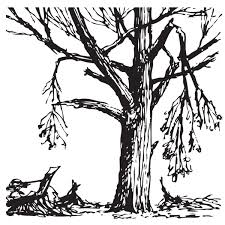 Illustration of a tree with damage