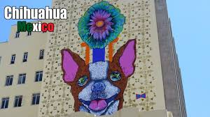 100 Where Is Chihuahua Located A Place Not To Avoid