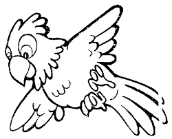 Parrot clipart black and white Pencil and in color parrot