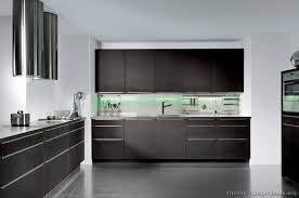 Amazing Dark Wood Modern Kitchen Cabinets Kitchens