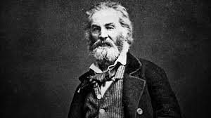 Walt Whitman The Wound Dresser by Bbc Radio 4 Walt Whitman U0027s War