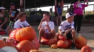 Pumpkin Patches Around Fort Worth Tx by Welcome To Mainstay Farm Pumpkin Capital Of Fort Worth Youtube