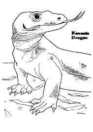 Komodo Dragon Siniffing With His Tongue Coloring Pages