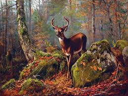 Accent Tiles For Kitchen Backsplash Tile Buck In The Forest By A Tait Accent Tile Mural