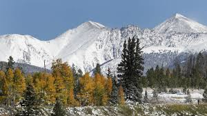 Colorado Springs Christmas Tree Permit 2014 by How To Plan Your Colorado U201cweedcation U201d Like A Responsible Grown Up