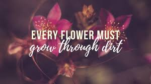 Floral Photo Quote Spring Desktop Wallpaper