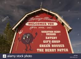 Canada, Saskatchewan, Saskatoon: The Berry Barn, Saskatoon Berry ... Walk Through Of Berry Barn Haunted House Youtube Wedding New Orleans Photographers Vanessa Triangle Quilt Archives The Sassy Quilter Canada Saskatchewan Saskatoon North2alaska Ana White Doll Farmhouse Bed Diy Projects Restaurant Stock Photos Images Alamy 14 Farms In Missippi Where You Can Pick Your Own Food Amite Jen Enjoying A Day Tasting And Touring In Tualatin Valley Photographer Amanda Hodges Weir