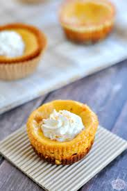 Pumpkin Cheesecake Gingersnap Crust Bon Appetit by Thanksgiving Recipes Pumpkin Cheesecake Bites My Suburban Kitchen