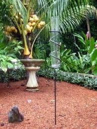 Decorative Outdoor Rain Gauges by Hummingbird Rain Gauge Garden Stake Rain Gauge Garden Stakes
